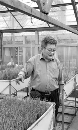 """在海南陵水南繁育种基地门52我爱银川新闻厅有一副姚海根撰写的对联:""""冬至春归育良种"""