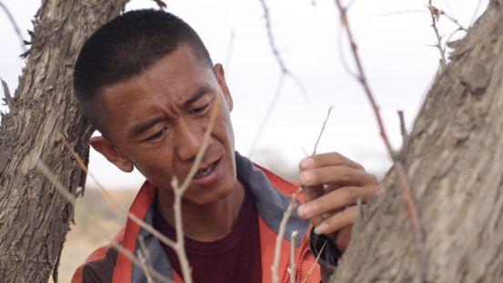 时代楷模八步沙林场第三代治沙人郭玺成为快手幸福乡村带头人