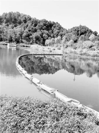 光催化技�g�τ谔嵘��用水源地水�|,到底有�]有效果?