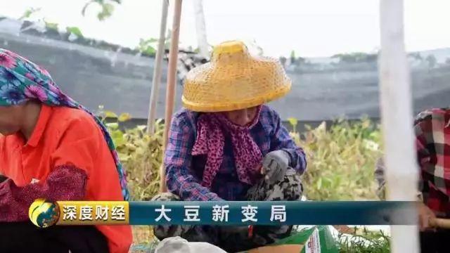 http://www.7loves.org/caijing/653555.html