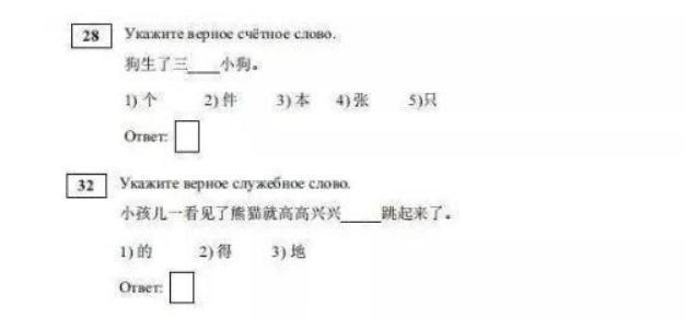 俄罗斯高考首开汉语李正悲伤的爱科目 热爱中国美食的她斩获满分
