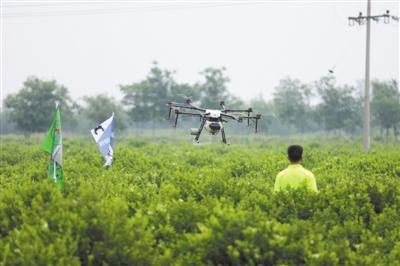 植保无人机专项赛决赛在河北巨鹿举行