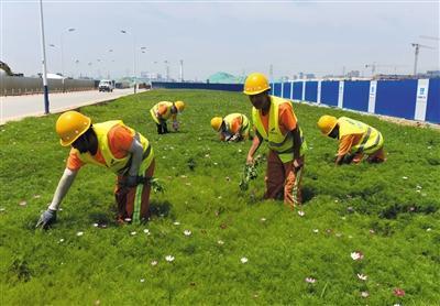 北京环球主题公园正在安装游乐设施