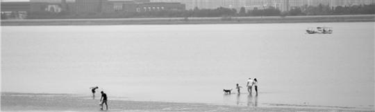 杭州九堡大桥下三人翻下江堤戏水被卷走