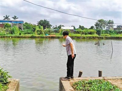 一岁男童掉鱼塘暖心邻人接力救 助男童顺遂脱险