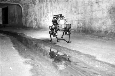 """拉開""""靈活""""人工智能時代序幕 機器人有望跨越仿真—現實鴻溝"""