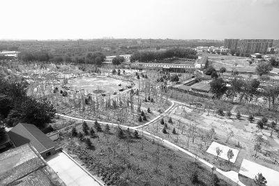 诚信在线拆除违建大院 建起城市公园