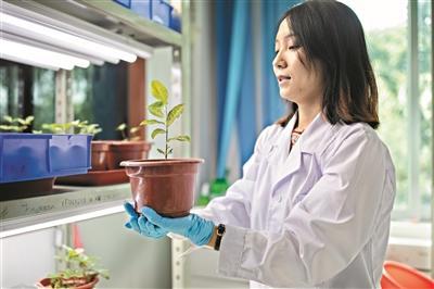 植物學先驅親手規劃打造華南植物王國
