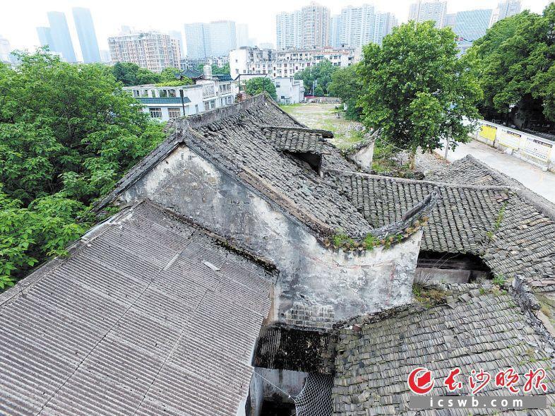 新河龙王庙至古仍完好保存着清朝传统修建形造。 少山表报齐媒体记者 李卓 摄