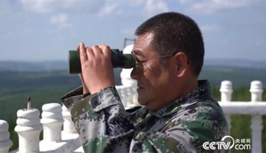 """刘军:夫妻坚守13年,只为护好一片绿色的""""海"""""""