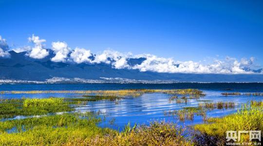 六国联手加强澜沧江-湄公河流域湿地保护管理