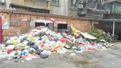 重庆时时全天计划网站这老旧小区怎么了?生活垃圾堆成山