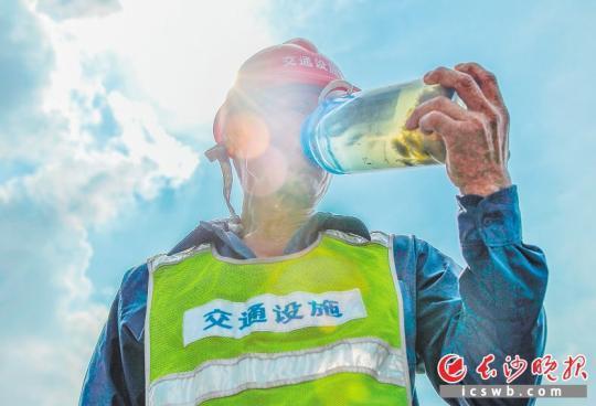烈日下,一名工人端着自己泡的大瓶菊花茶大口喝下。均为长沙晚报全媒体记者 邹麟 摄
