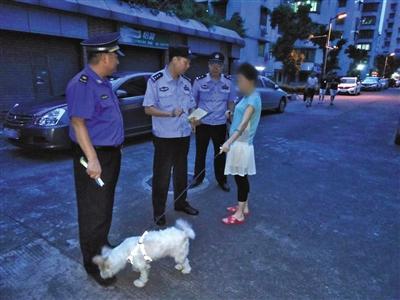 <b>广州:警方已处理362名不登记不牵绳犬主</b>