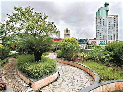 广东禅城将在五年内完成5万平方米天面绿化