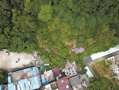 """白云山""""还绿于民""""拆违26万平方米 部分地段已经复绿"""