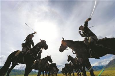 驰骋在巴塘草原上的骏马