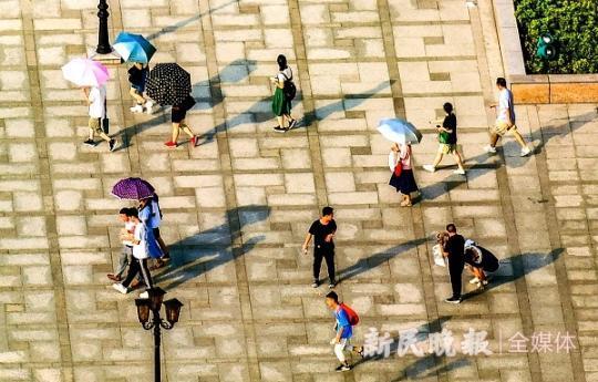 高温天,为啥心脑血管病患者要特别广州助孕当心
