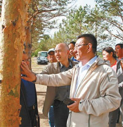 追记内蒙古大兴安岭林区干部于海俊:生命在林海定格