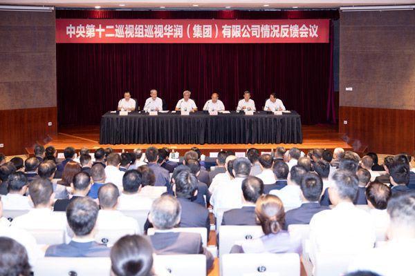 中央第十二巡视组向华润(集团)有限公司反馈巡视情况