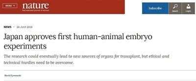 用动物胚胎培育人类移植器官 面对的是理与技术两座大山!