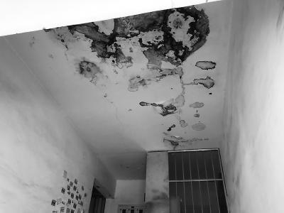 香港时彩雨生物科技有限公司屋顶常修常漏 滴成居民心病