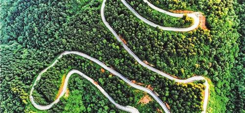 贵州:来一场深刻的农村经济产业革命