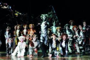 南昌:音樂劇《貓》緊急加開一場演出