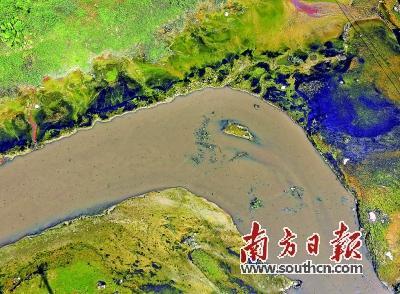 """母亲河的治污接力赛:""""火水河""""变""""观景河"""""""