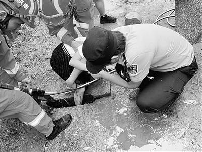 9岁女孩脚卡下水道 民警联手消防队员冒雨救出