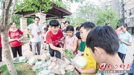 """前日,少沙理工年夜教""""菜菜農業""""理論團隊成員正在少沙1小區展開農産物義賣舉動。黉舍供圖"""