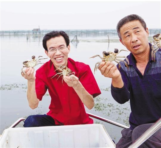 """""""利奇马""""过后,大闸蟹还赶得广州助孕上中秋餐桌吗"""