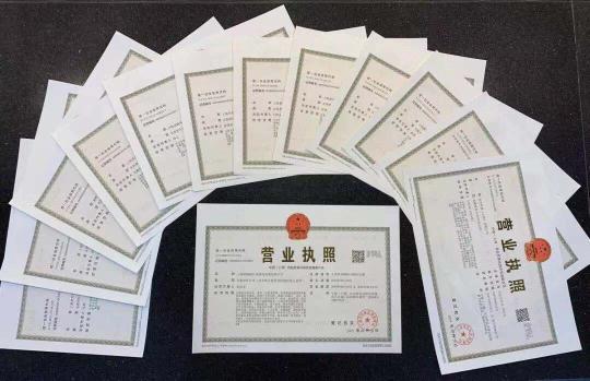 上海临港新片区揭牌首日 13家企业获颁新片区最新营业执照