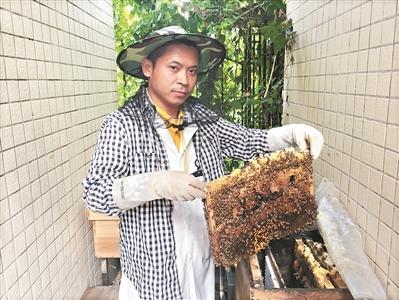 """""""80后""""蜂疗师: 用蜜蜂""""针灸"""" 为患者治病"""