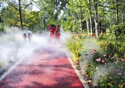 北京东城第二个城市森林公苏州助孕园开园