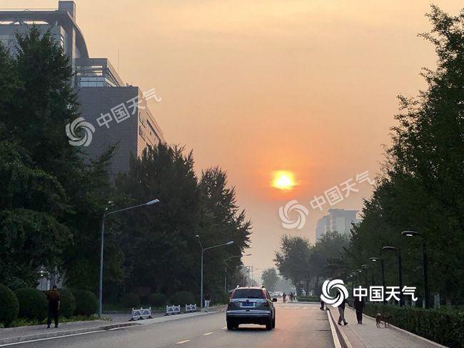 北京晴晒持续昼夜温差较大 花粉浓度偏高