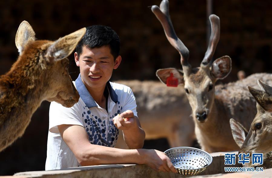 他是昆明一mainhong 高端 建设家汽修厂的技术骨干