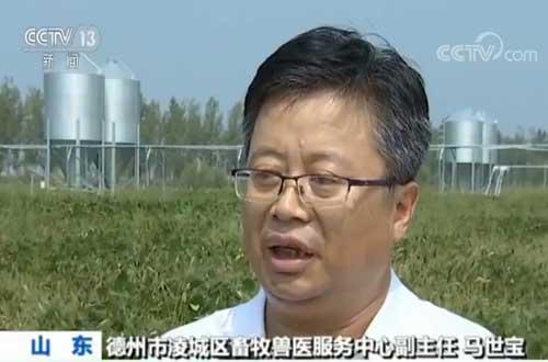 记者查询拜访 猪肉稳产保供办法频出 养户自信心加强 正扩展产能