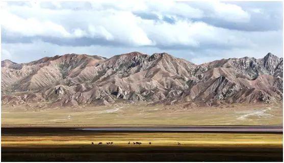 美国小哥登上青藏高原 找寻青海生态保护的秘密