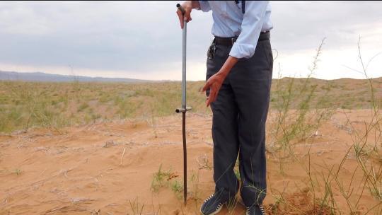 """""""沙漠守望者""""唐希明,将漫漫黄沙变为绿洲"""