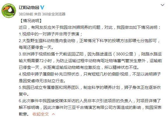 辽阳动物园回应狮子暴瘦:网传视频不足以说明狮子受虐待