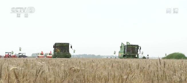 农业农村部:今年粮食产量有望稳定在13000亿斤以上