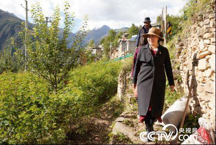 """""""不管是苦是甜都用微笑面对"""",她带着30个高原村脱贫"""