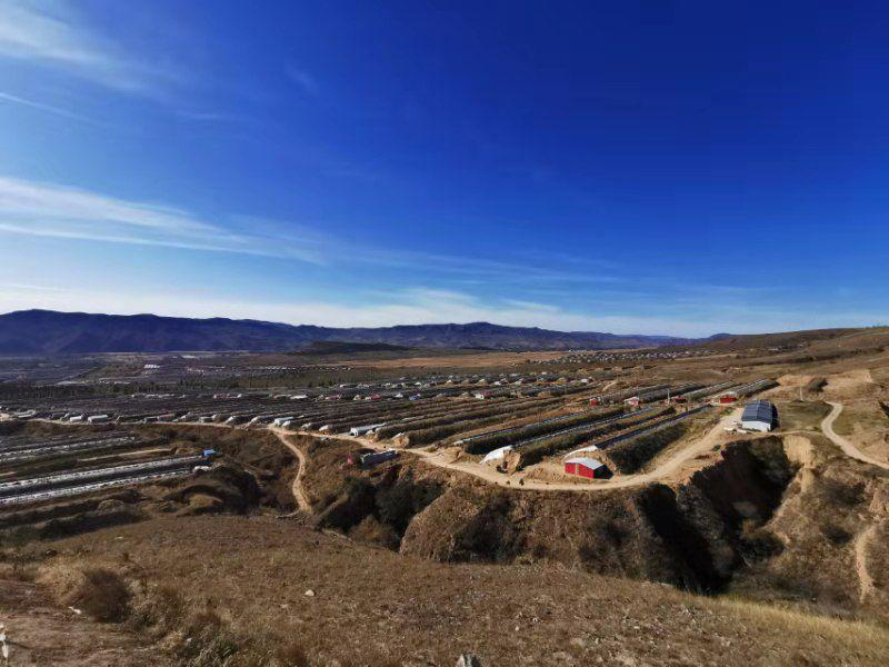 赤峰公主岭农业财产园