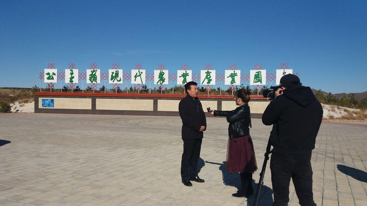赤峰大庙镇:兴产业、搭平台 让脱贫攻坚工作更具活力