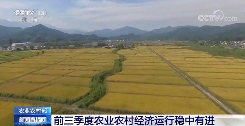 <b>农业农村部:前三季度农业农村经济运行稳中有进</b>