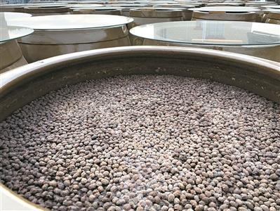 东莞梁氏父子用心守护寮步豆酱传统美味 坚守近50年