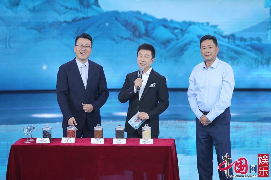 细数央视主持人《魅力中国城》时刻 妙语连珠展风采