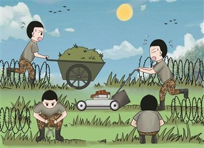 训练场的杂草要不要清理?练兵打仗唯战不能唯美