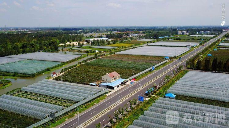 """有""""颜值""""有""""气质""""!泰州的新农村有了新模样"""